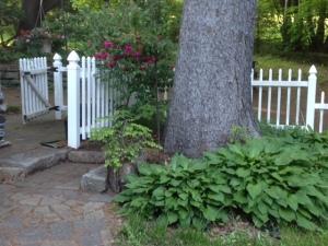 Terrace step