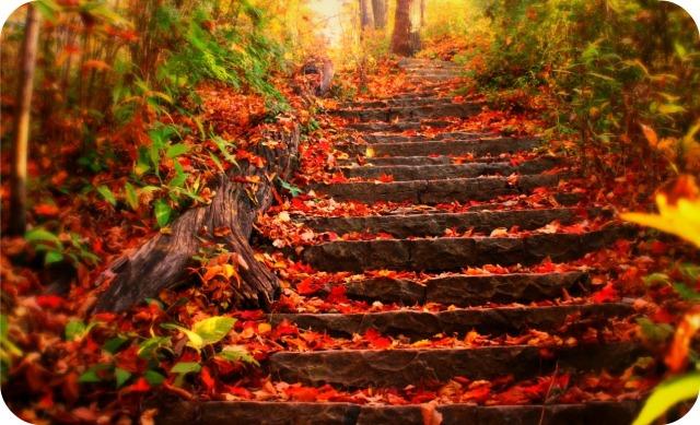 fall-steps
